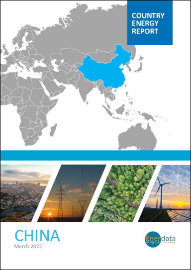 China energy report