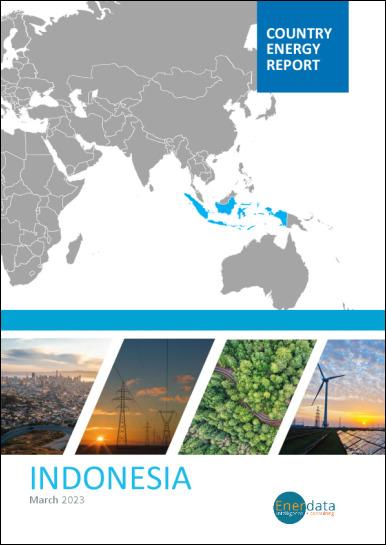 Indonesia energy report