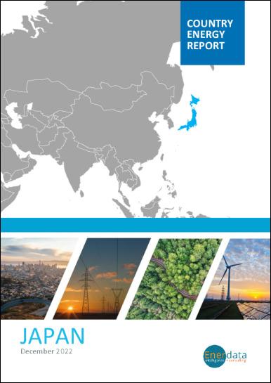 Japan energy report