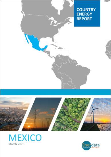 Mexico energy report