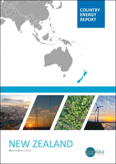 New Zealand energy report