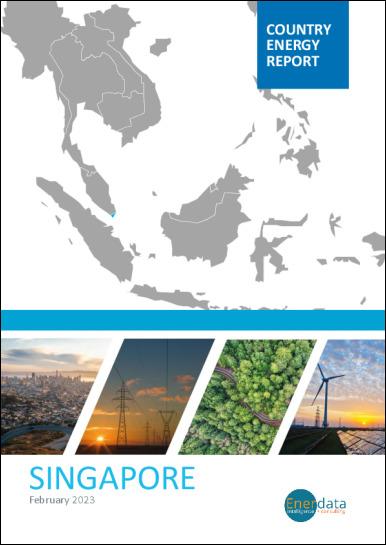Singapore energy report