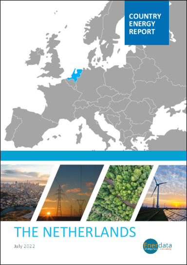 The Netherlands energy report