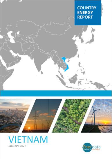 Vietnam energy report