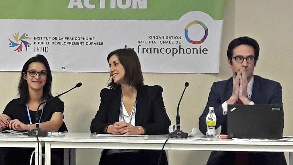 COP 22 Enerdata Yasmine ARSALANE