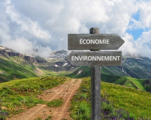 Economic theory and environment