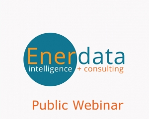 Public webinar Global Energy Trends