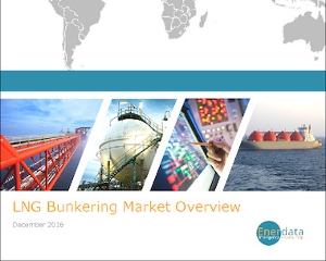 LNG Bunkering Market Overview